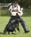 FOTOGALERIE ... trénink obran GERRY